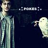 kal_ella: (Harry Pokes Hedwig)