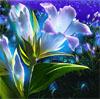 free_energy: (Flower)