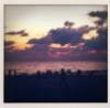 tobeborn1: (Sarasota)