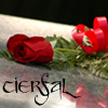 tierfal: (Red Rose) (Default)