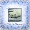 arctic_seasons: (ArcticSeasons)