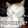 ayanamisama: (Sporfle)