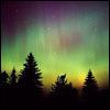 hallavaris: (aurora borealis)