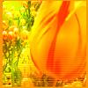 aimeelicious: (tulip_bywisteria)