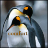 aimeelicious: (comfort)
