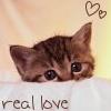 aimeelicious: (kittenreallove_bybabaloney)