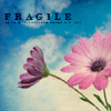 aimeelicious: (fragileflower_bylaylablack)