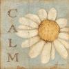 aimeelicious: (calm_bybisty)
