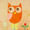 aimeelicious: (owl6_bybisty)