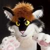 slycat: (Default)