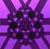 callicrates: (purple)