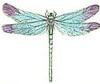 lyrical1: (dragonfly)