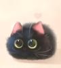 countessmouse: (Black Cat)