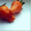 tahanrien: (Erdbeere)