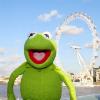 evilmike: (Kermit)