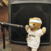 travelswithkuma: (Sound Check Bear)
