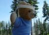 travelswithkuma: (Smokey Bear)