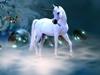 katydaqueen: (unicorn)