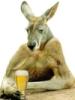 ozgirlabroad: (kangabeer)
