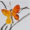farfarella: butterfly (butterfly)