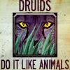 jypsie: (Druids do it)