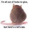 jypsie: (rats ass)