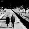 thetofupirate: (walking)