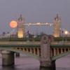shinytoaster: (Harvest moon)
