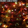 shinytoaster: (Christmas Lights)