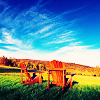 sardonicynic: stock | picturesque (empty chairs and open sky)