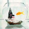 sardonicynic: stock | holidays are here again (american aquarium drinker)