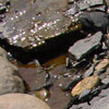 radegund: (wet-stones)