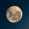moony_j_lupin: (Moon)