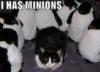 firstfallenpanda: (minions)