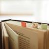 rabidmunkee: (books marked)