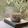 rabidmunkee: (books and snow)