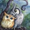 rabidmunkee: (owls)