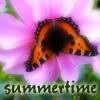 laymon: (Summer)