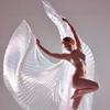 nerhegeb: ((stock) isis wings)