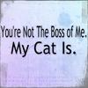 twistdbear: (not the boss of me)