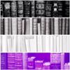 ladyiapetus: (Ace Pride Flag: Books)
