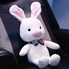 timeripple: (pig-rabbit)