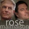 rose_malmaison: (Default)