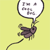 mantidae: (gunshow: cool bug)