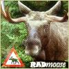 radmoose: (radmoose)