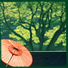 midnightdiddle: (parasol)