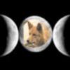 lit_luminary: (Kylie against triple moon)