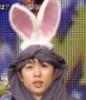 dekkawai: (bunny sho)