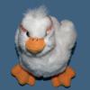 lnr: (staring duck)
