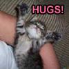 mowglikat: (hugs)